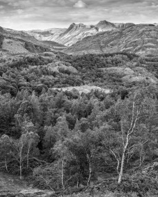 The Langdales from Holme Fell