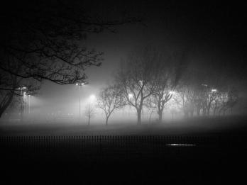 Night Light, Simon Lupton