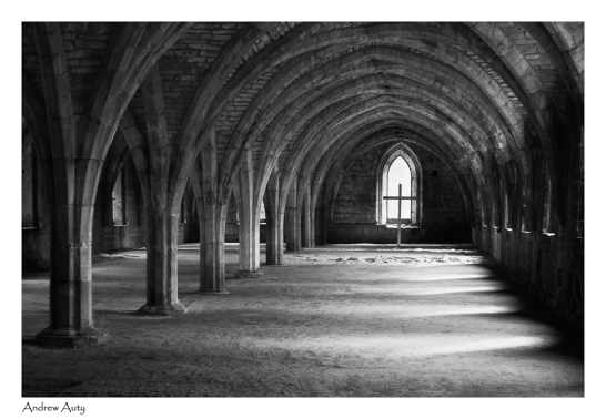 11 Fountains Abbey Cellarium_Andrew Auty 028