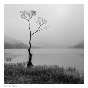 6 Misty Buttermere_Andrew Auty 1701